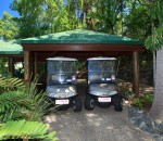 Electric Buggies for Guests